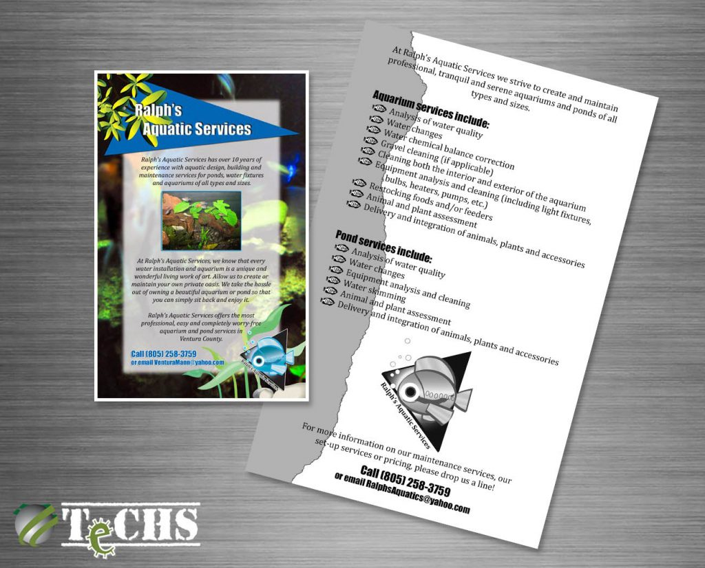 Flyer | Copyright TeCHS